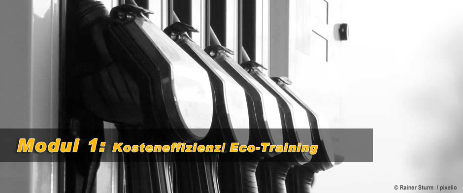 Modul 1: Kosteneffizienz/ Eco-Training